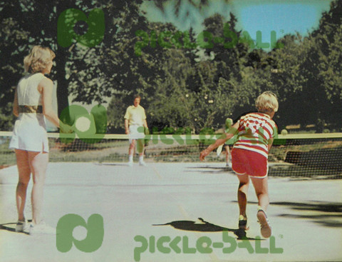 Original pickleball court