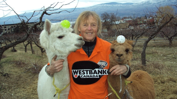 Henry with his two pet pickleball alpacas