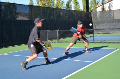 Great pickleball shots