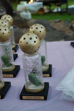 Aren't these awards adorable?